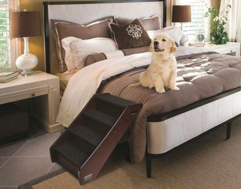 Pet Stairs for Bed 30 Inches High (Best Review 2020)