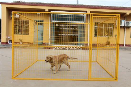 dog run size