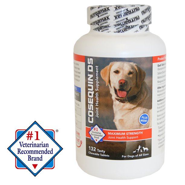 Is Cosequin DS Good For Dogs (Does it Maintain Joints)?